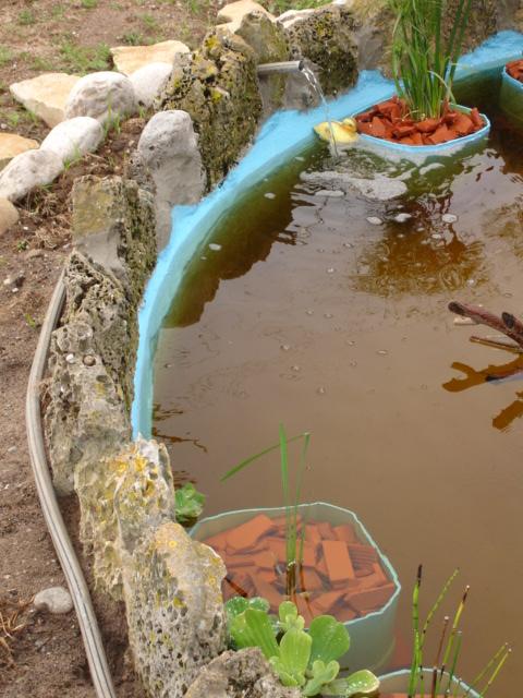 Finalmente o meu lago, vejam as fotos! Dsc01531