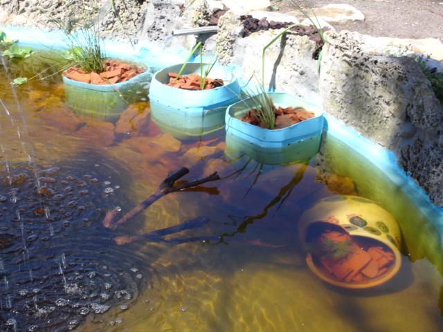 Finalmente o meu lago, vejam as fotos! Dsc01617