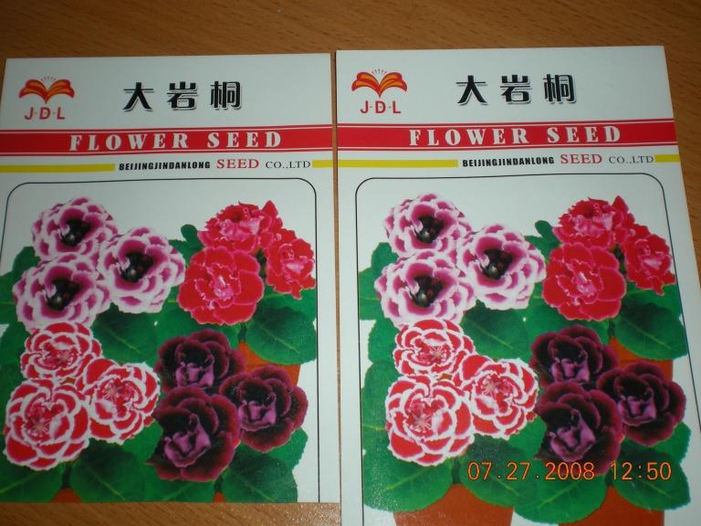 Размножение глоксиний семенами 10751015