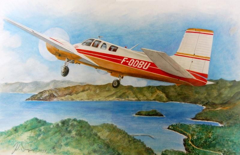 Jojo, le Beechcraft Twin-Bonanza modèle D50 de Jacques Brel Saquet10