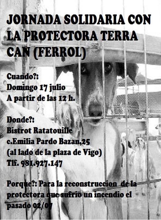Jornada solidaria con la protectora Terracán, el 17 de julio Cenate10