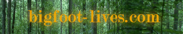 Welcome to the Online Bigfoot Community