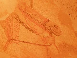 Los pasadores de capa y cinturón [DEBATE SEÑALADO] - Página 2 Pc210010