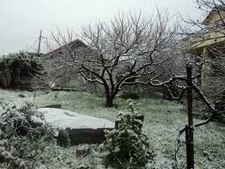 Il a neigé à Dellys! 43064310