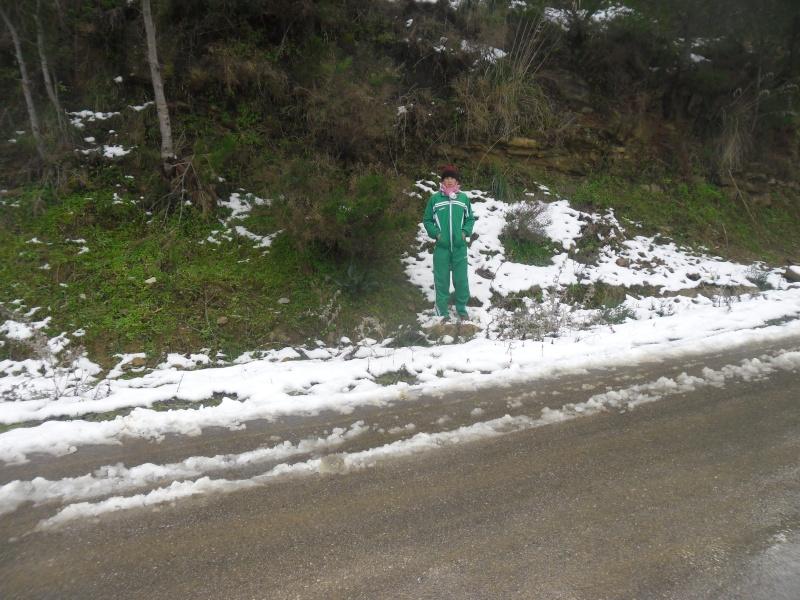 Il a neigé à Dellys! _am_0010