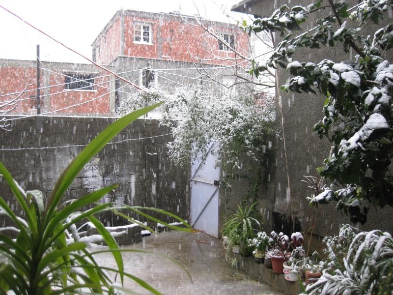 Il a neigé à Dellys! Img_0016