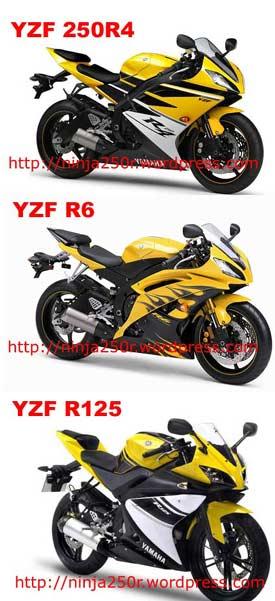 yamaha yzf250 - Page 2 R250_r10