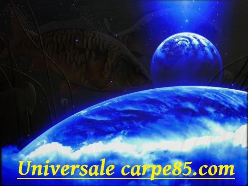 universal-carpe-85.com