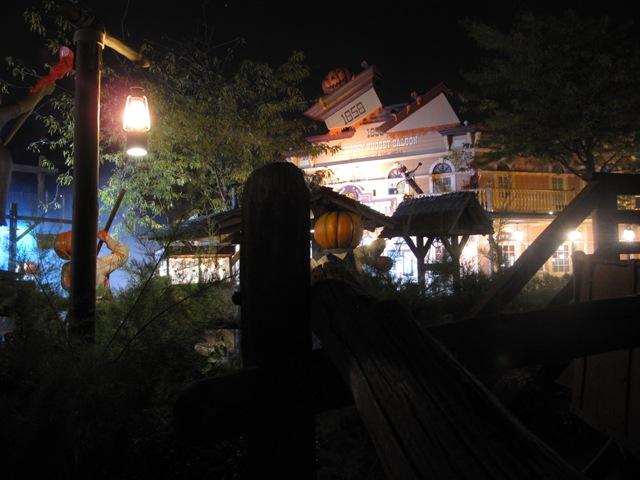 Le nostre foto notturne di Disneyland Paris - Pagina 3 Img_0312