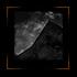 ESTHETIQUE; avant-gout :: Biton014