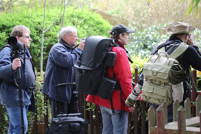 Sortie au Zoo D'amnéville le 05 Mai 2012 : Les photos - Page 2 5h9c0310