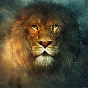 Images Israélites et Messianiques Lionbd11