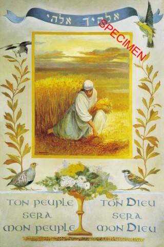 Images Israélites et Messianiques Rutham10