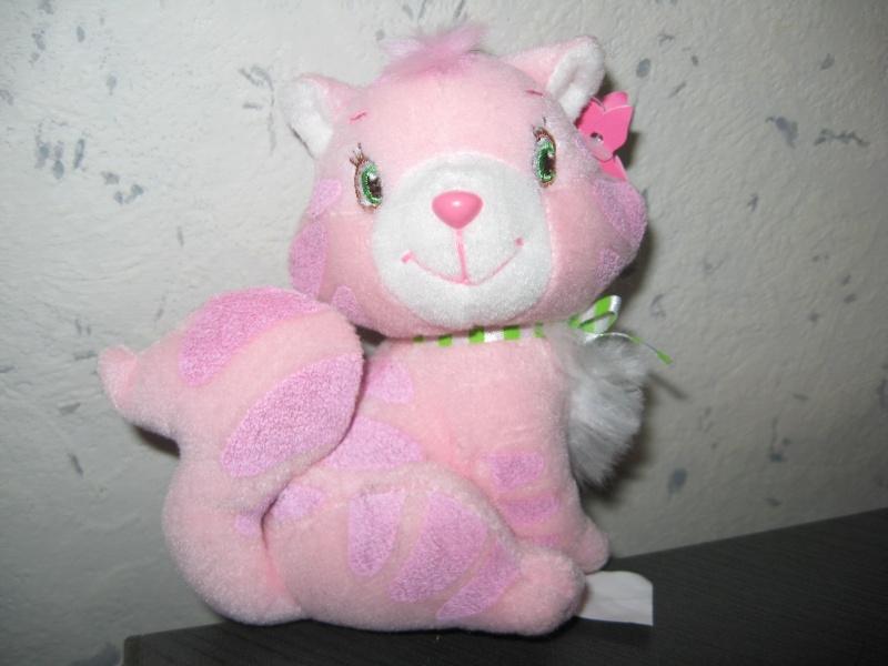 Riz-au-lait / Pralinette, le chat de Charlotte aux fraises (DOSSIER) Img_7325