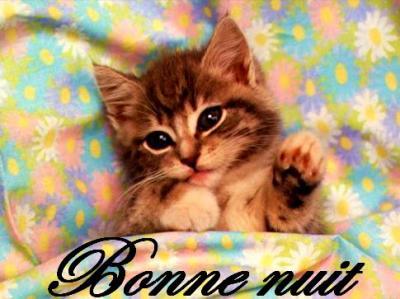 Bon Lundi Bonne_16