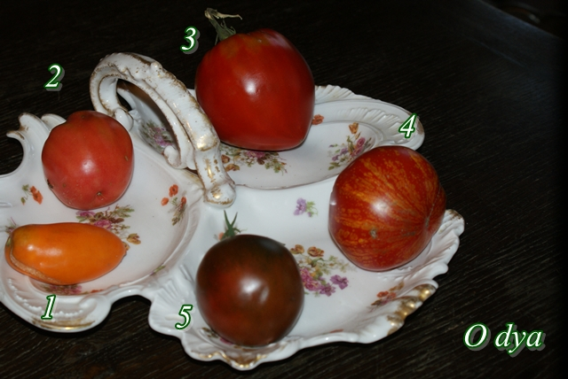 Tomates. - Page 4 2011_211