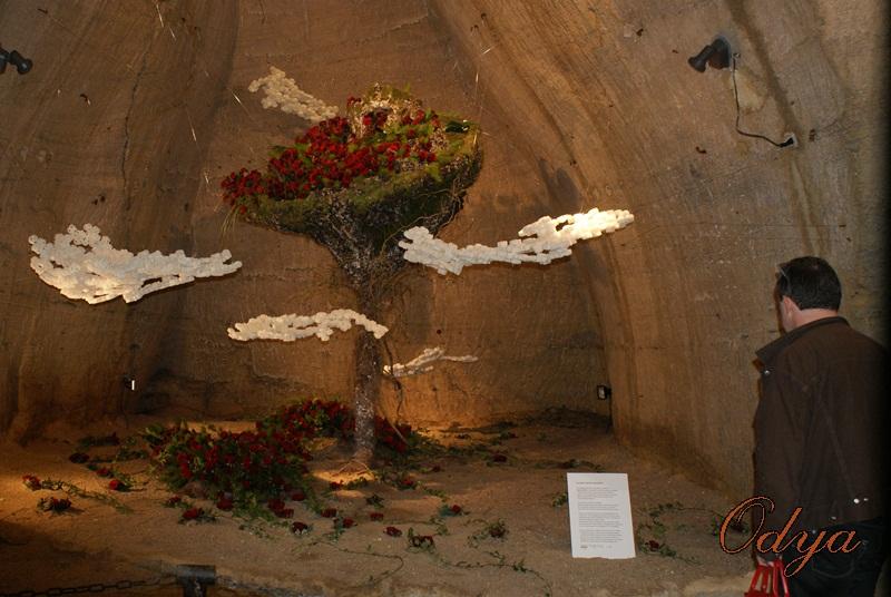 Les Journées de la rose (49 Doué la Fontaine) Dsc00611