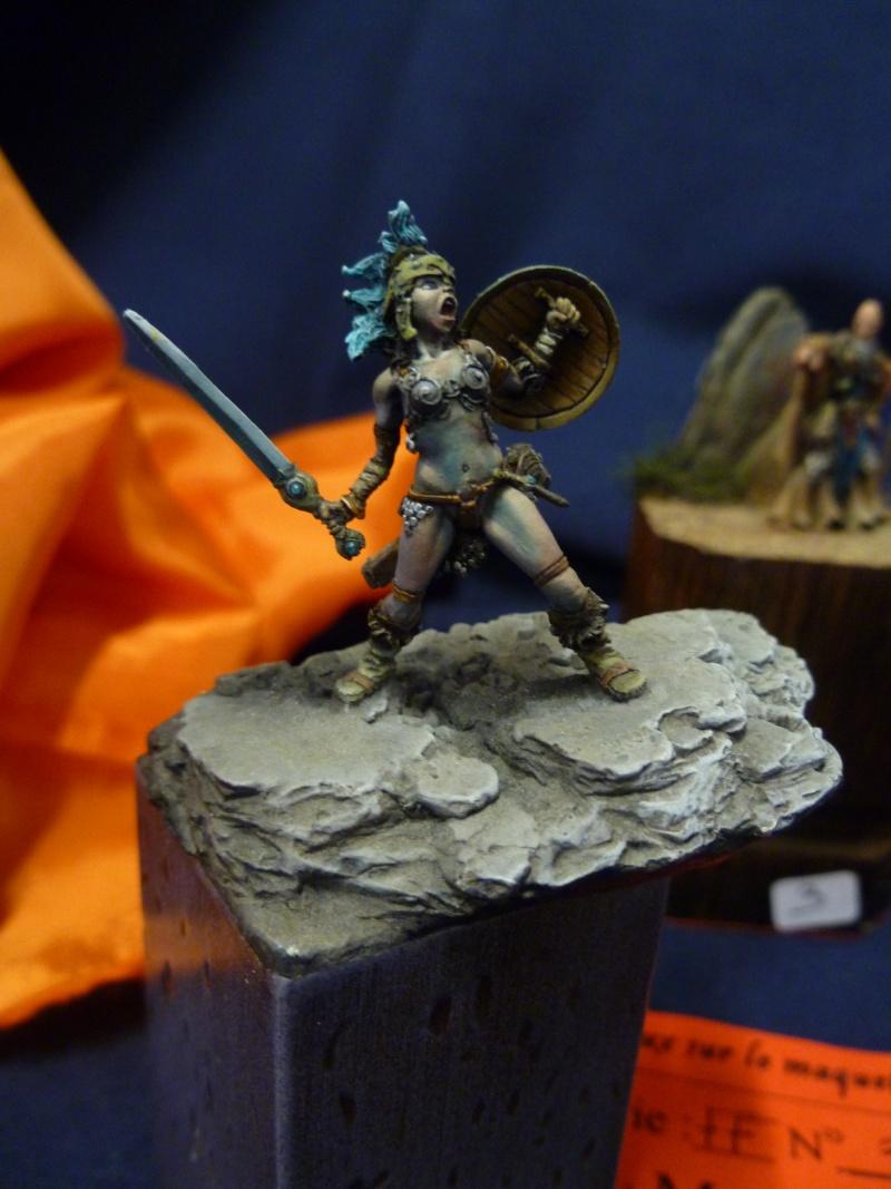 Expo maquettes de Ransart les 28 et 29 Janvier 2012 P1020114