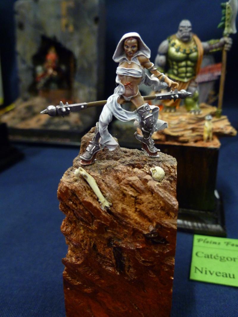 Expo maquettes de Ransart les 28 et 29 Janvier 2012 P1020121