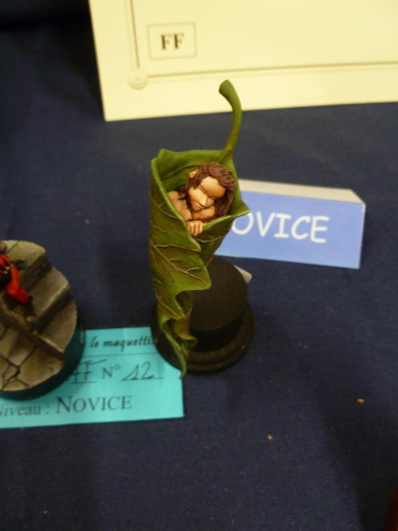 Expo maquettes de Ransart les 28 et 29 Janvier 2012 P1020123