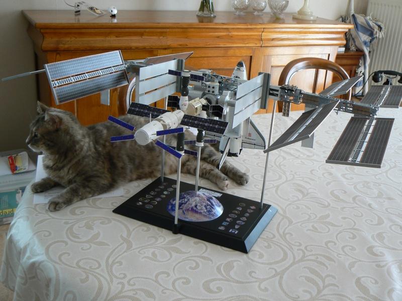 Construction d'une maquette de l'ISS - Page 2 P1210720