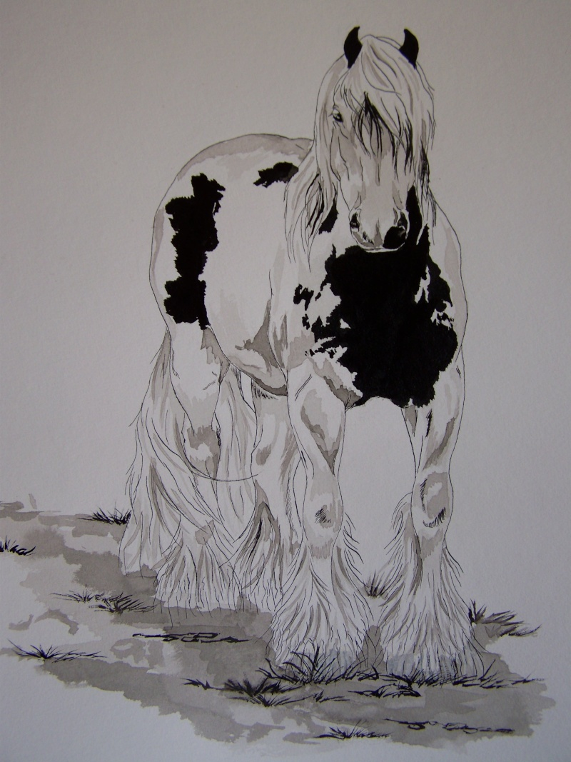 animaux:dessin,pyrogravure, peinture tissus, porcelaine etc.. 100_1418