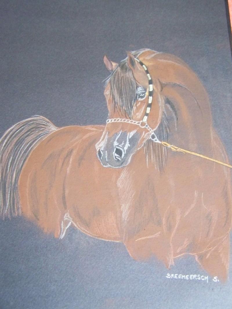 animaux:dessin,pyrogravure, peinture tissus, porcelaine etc.. - Page 2 100_1434