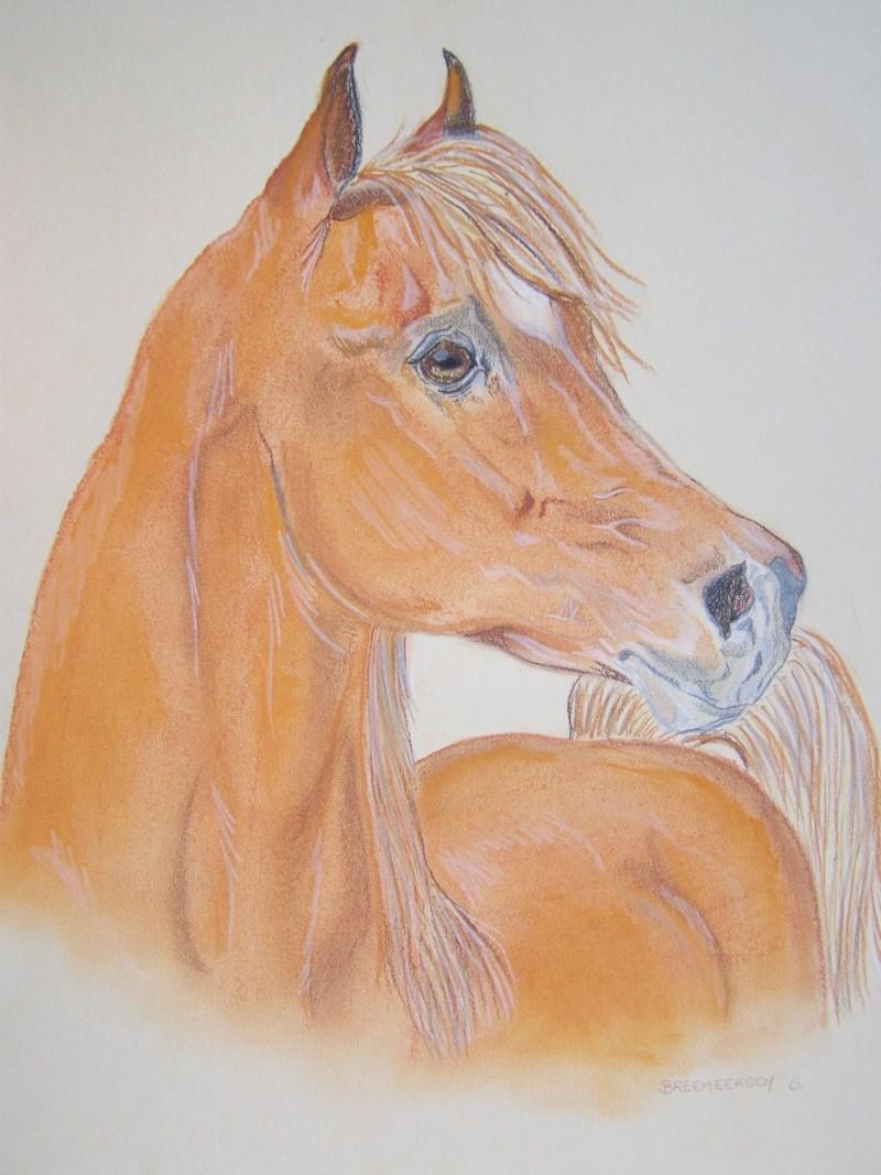 animaux:dessin,pyrogravure, peinture tissus, porcelaine etc.. - Page 2 100_1435