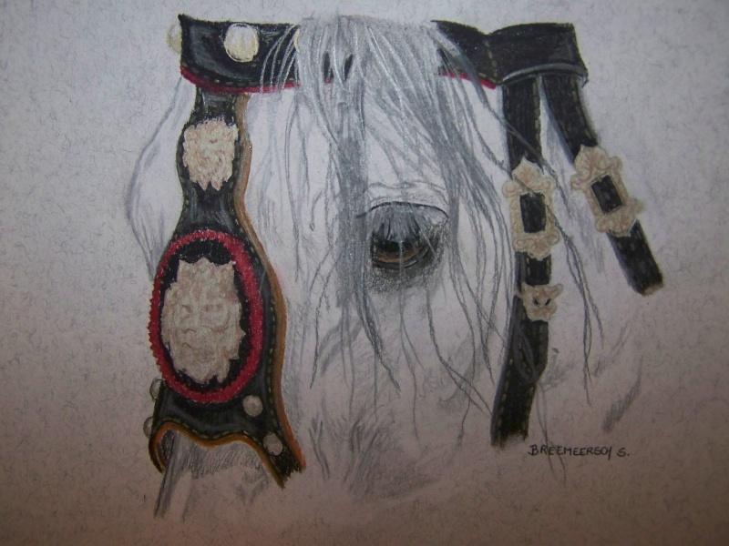 animaux:dessin,pyrogravure, peinture tissus, porcelaine etc.. - Page 2 100_1439