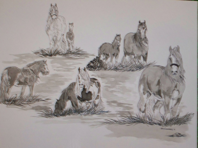 animaux:dessin,pyrogravure, peinture tissus, porcelaine etc.. - Page 2 Sophie12