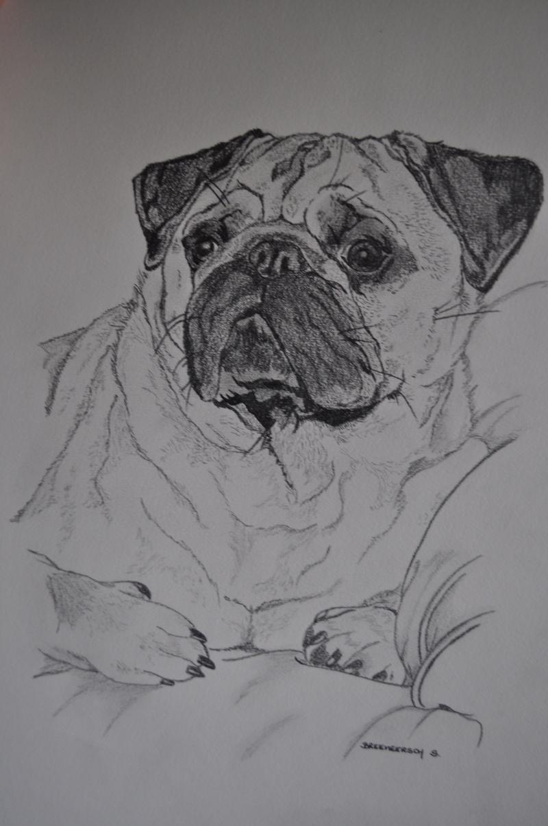 animaux:dessin,pyrogravure, peinture tissus, porcelaine etc.. - Page 2 Titan210
