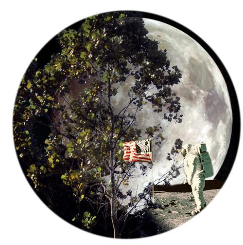 "Apollo 14 - ""Les arbres de la Lune"" Moontr11"
