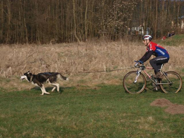 course Oberhaslach 25/03/2012 (67) 54286810