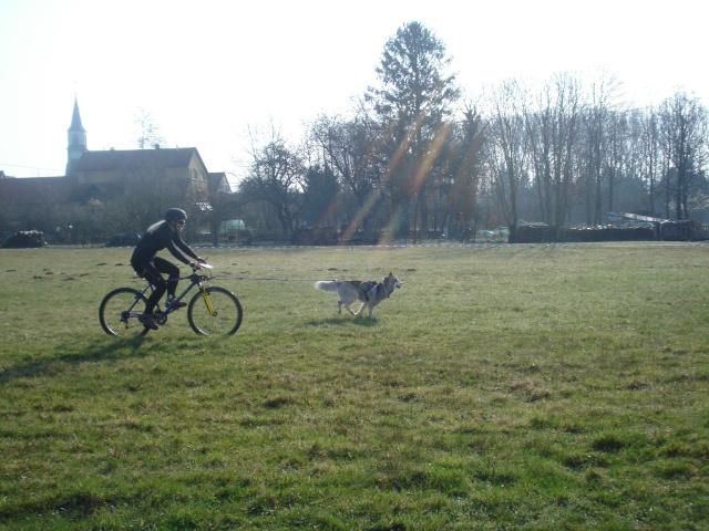 course Oberhaslach 25/03/2012 (67) Dsc06134