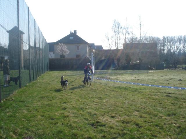 course Oberhaslach 25/03/2012 (67) Dsc06135