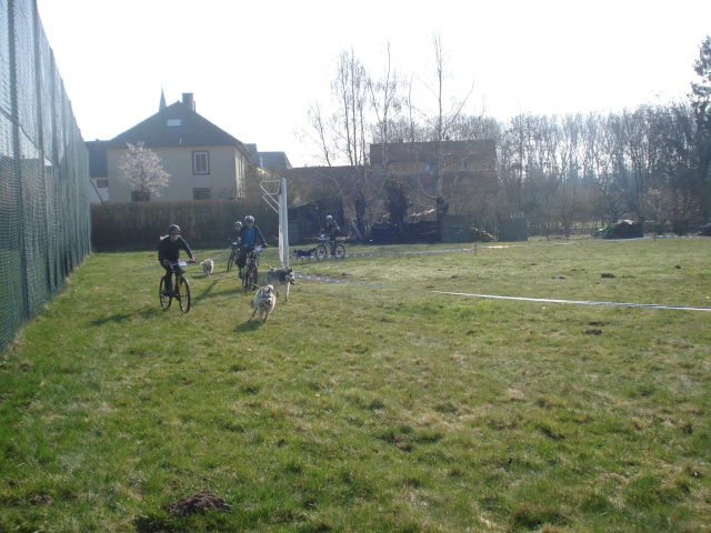 course Oberhaslach 25/03/2012 (67) Dsc06136