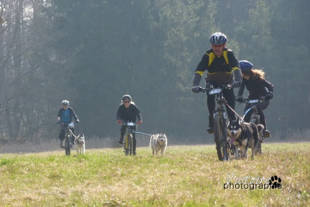 course Oberhaslach 25/03/2012 (67) Oberha13