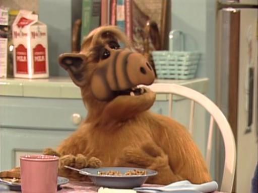 grimaces de nos poilus pour sourire un peu !  Alf10