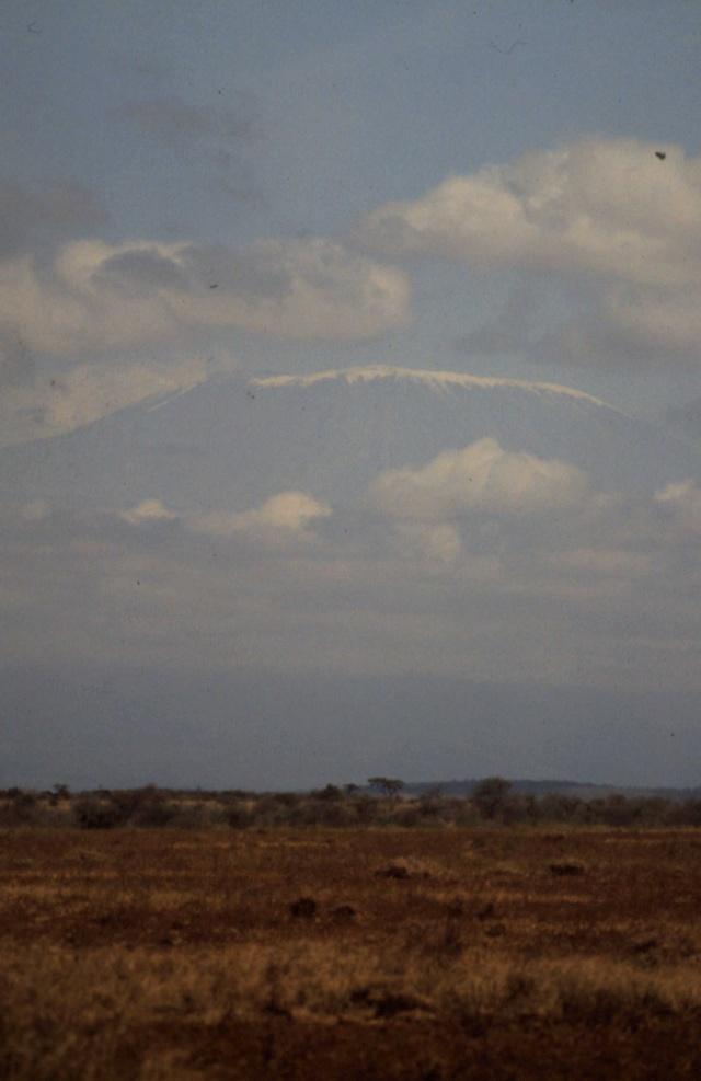 """ Les Neiges du Kilimandjaro "", film de Robert Guédidjan 1-22-211"