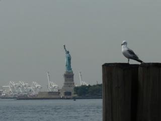 New-York,  New-York  P1150112