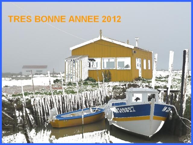 2012 : Vive l'an neuf ! P1170110