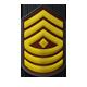 Rango 8 Brigada, ¡¡Formen filas!!