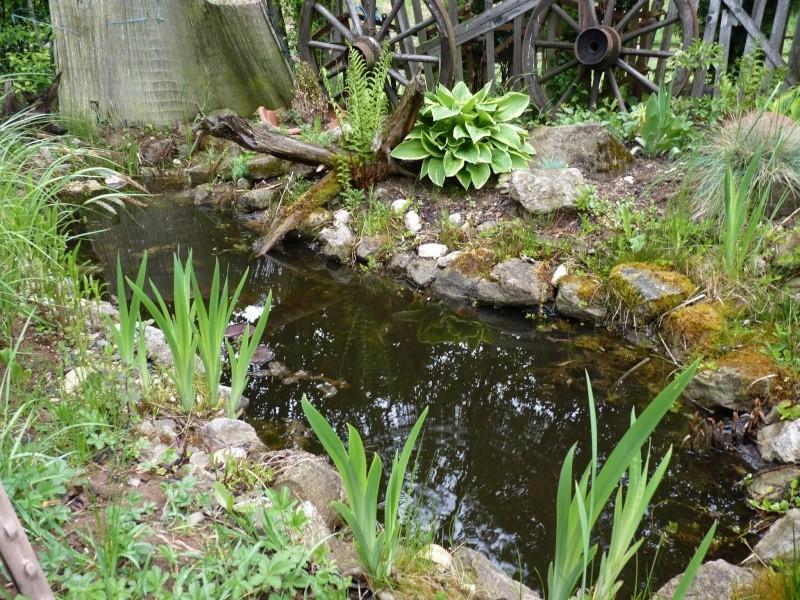 Gärten im Bilde - Seite 3 01324