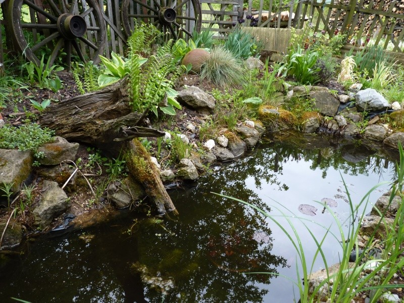 Gärten im Bilde - Seite 3 01619