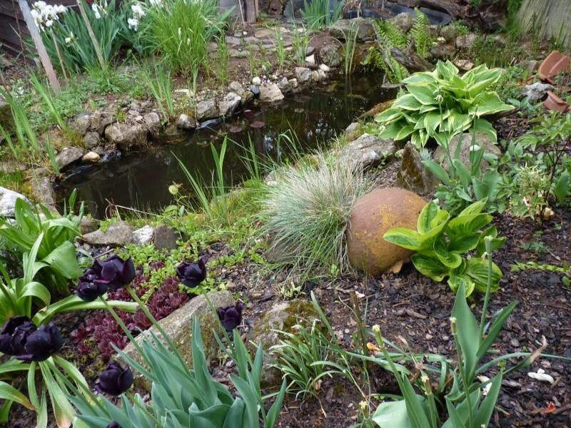 Gärten im Bilde - Seite 3 01923