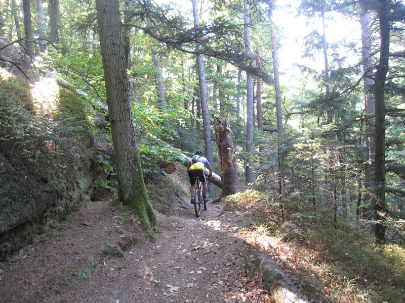 VTT en Vosges du Nord Img_0090
