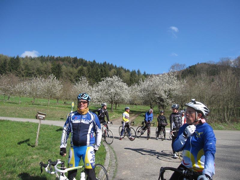 Sortie du 7 avril à Britzingen, Badenweiler, Feldberg, Auggen Img_0589