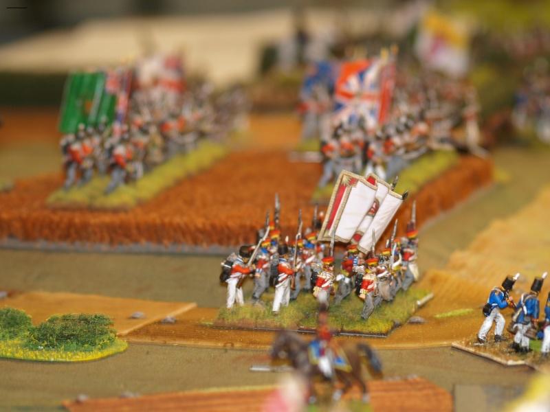 """Waterloo, """"ils finiront par passer ces maudits français""""... 22410"""
