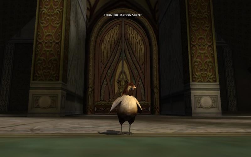C'est du poulet ma cocotte Screen22