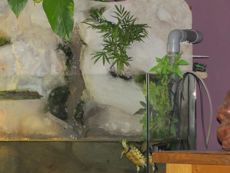 nouvelle aqua et decor en mortier hydro Img_4324